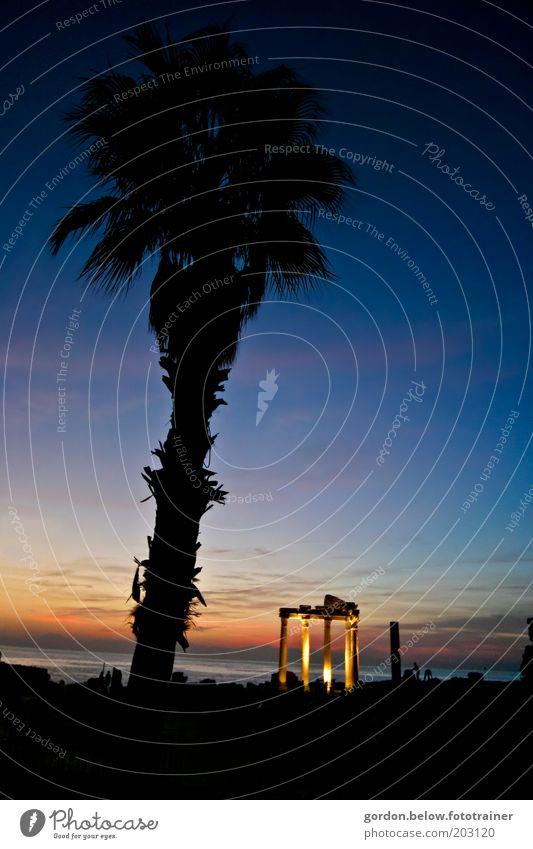 dunkle Palme Himmel Meer blau Sommer schwarz Ferne Architektur Tourismus historisch Palme exotisch Abenddämmerung Sehenswürdigkeit Ferien & Urlaub & Reisen Säulenkapitell