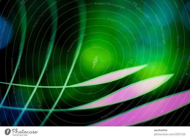 Reflektion grün blau schwarz Farbe Linie Kunst rosa ästhetisch Netz abstrakt Ornament Phantasie Illusion eckig geschwungen Strukturen & Formen
