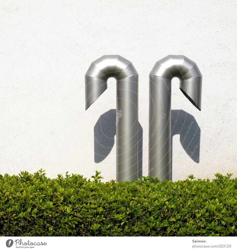 Schlaffi grün Wand Mauer 2 Metall rund Sträucher Röhren eckig gekrümmt Buchsbaum Lüftungsschacht