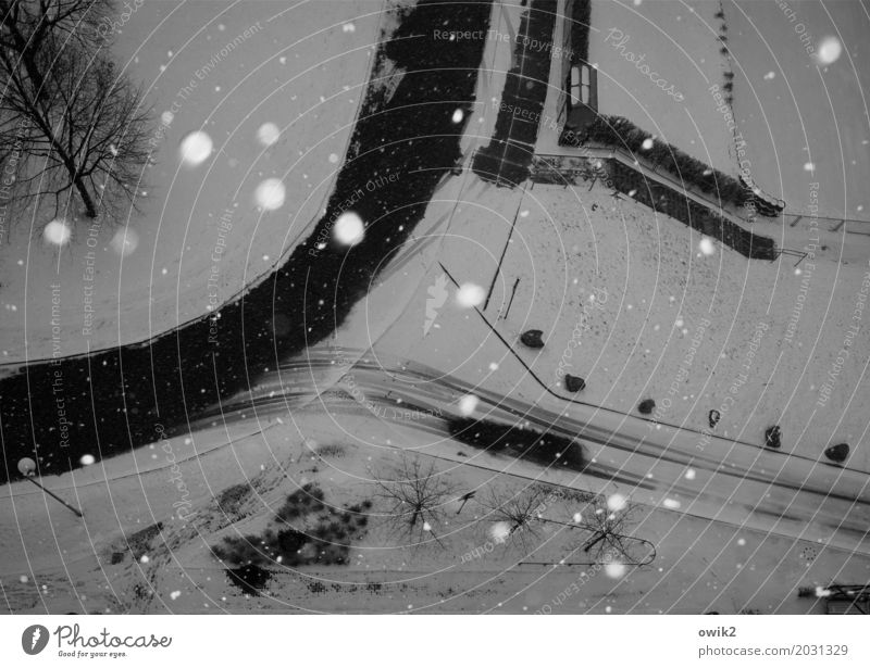 Flockig Umwelt Natur Winter Schönes Wetter Eis Frost Schnee Schneefall Baum Sträucher Hecke Bautzen Lausitz Deutschland Kleinstadt Stadtrand Straße Kurve