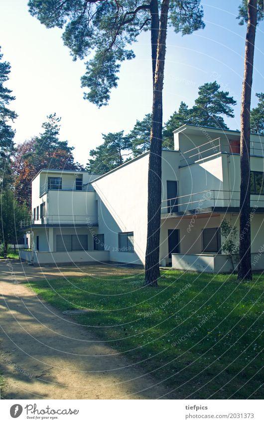 Bauhaus Meisterhaus Dessau Stadt Haus Wald Architektur Stil Gebäude Fassade Denkmal Kiefer Zwanziger Jahre Retro-Farben Meisterhäuser