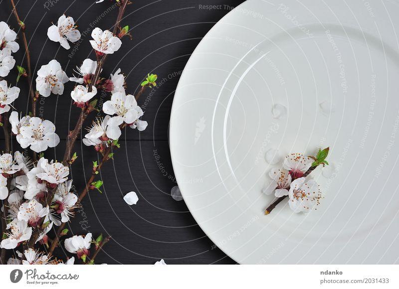 Weiße leere Platte eine Holzoberfläche Mittagessen Abendessen Teller Tisch Küche Restaurant Blume alt oben retro schwarz weiß Speise Mahlzeit Aussicht bügeln