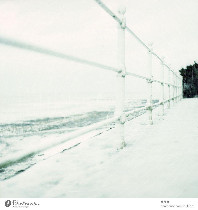 Wisst ihr noch, wie kalt es war? Meer Winter Strand Ferne kalt Schnee Wege & Pfade Landschaft Eis hell Wellen Küste Wind Sicherheit Frost gefroren