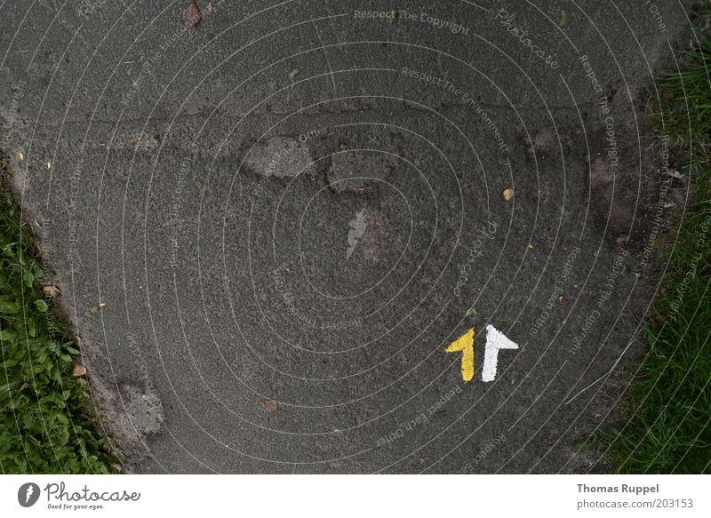 Nach oben, oder? weiß grün gelb grau Wege & Pfade Schilder & Markierungen Beton frei Pfeil Zeichen Richtung Verkehrswege aufwärts Perspektive Verkehrszeichen