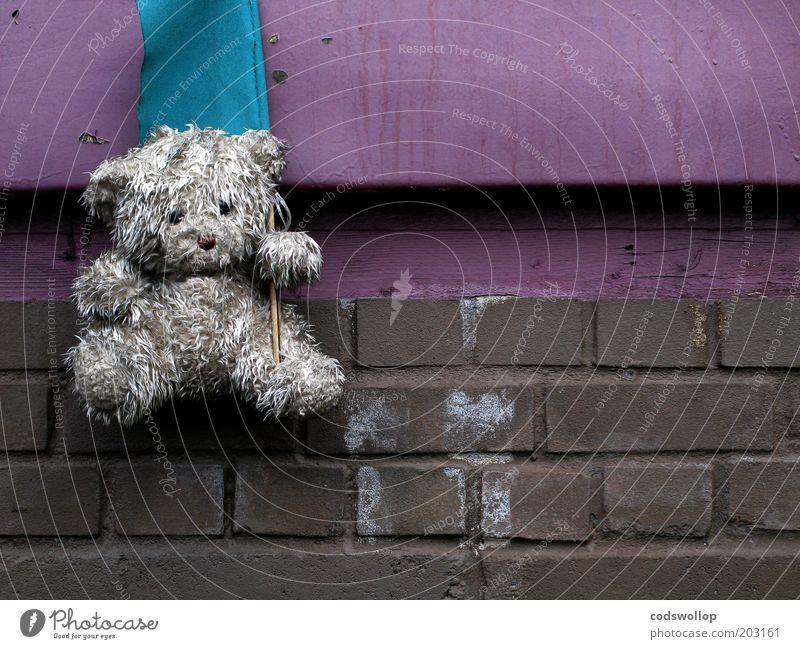 maskottchen Mauer Wand Spielzeug Teddybär Stofftiere Fahne dreckig trist Gelassenheit standhaft Traurigkeit Trauer Enttäuschung Einsamkeit Erschöpfung Backstein