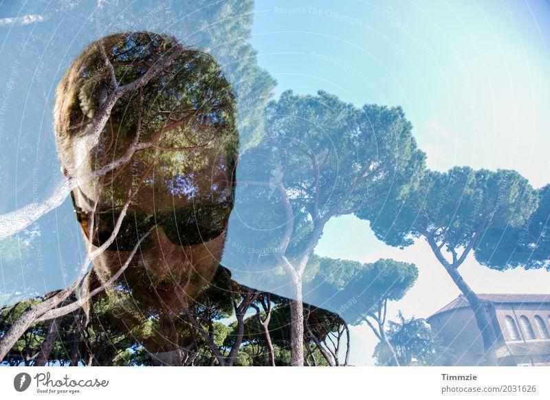unter Bäumen Erholung Sommerurlaub Mann Erwachsene 1 Mensch 18-30 Jahre Jugendliche Natur Baum Park Coolness Verschwiegenheit ästhetisch Zufriedenheit