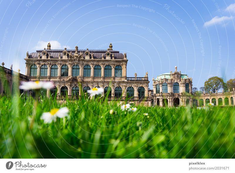 Dresdner Zwinger Ferien & Urlaub & Reisen Sommer Stadt Blume Architektur Wiese Gras Gebäude Kunst Garten Tourismus Deutschland Park Europa Kultur historisch