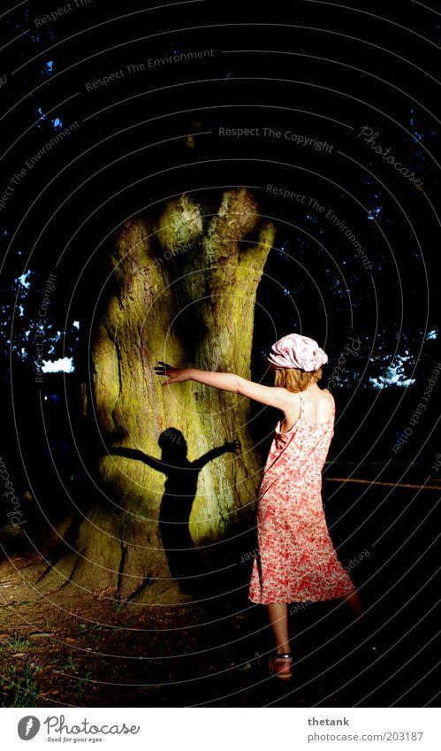 waldfee Mensch schön ruhig Bewegung Glück Park Tanzen elegant frei ästhetisch Romantik Kleid Lebensfreude natürlich Kindheit Baumstamm