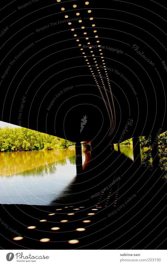 Bahnbrücke im Sommer Umwelt Natur Landschaft Pflanze Wasser Schönes Wetter Wärme Baum Park Seeufer Nürnberg Menschenleer Brücke Schienenverkehr beobachten