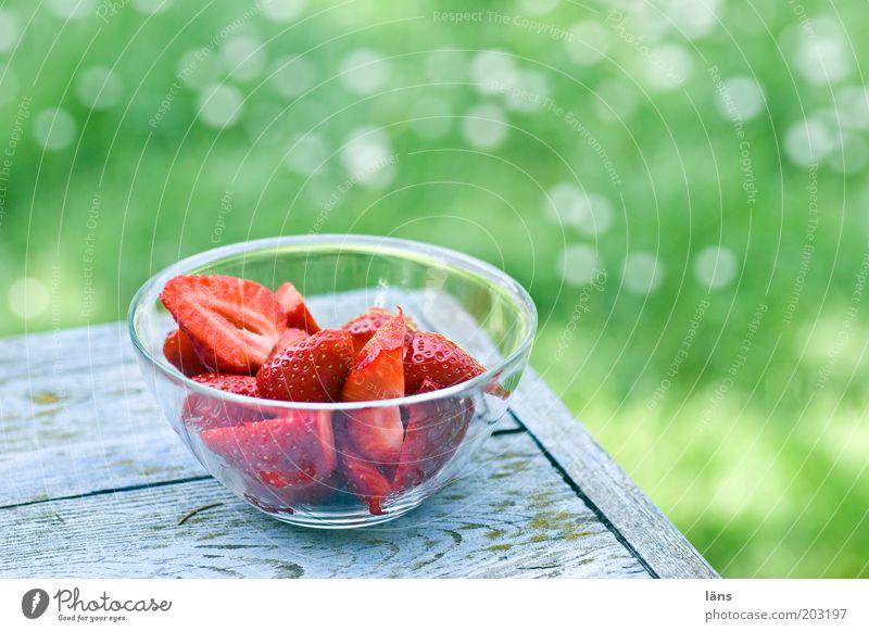 frisch aufgetischt grün rot Sommer Ernährung Wiese Gesundheit Lebensmittel Frucht Pause authentisch lecker Vitamin Schalen & Schüsseln Erdbeeren Lack