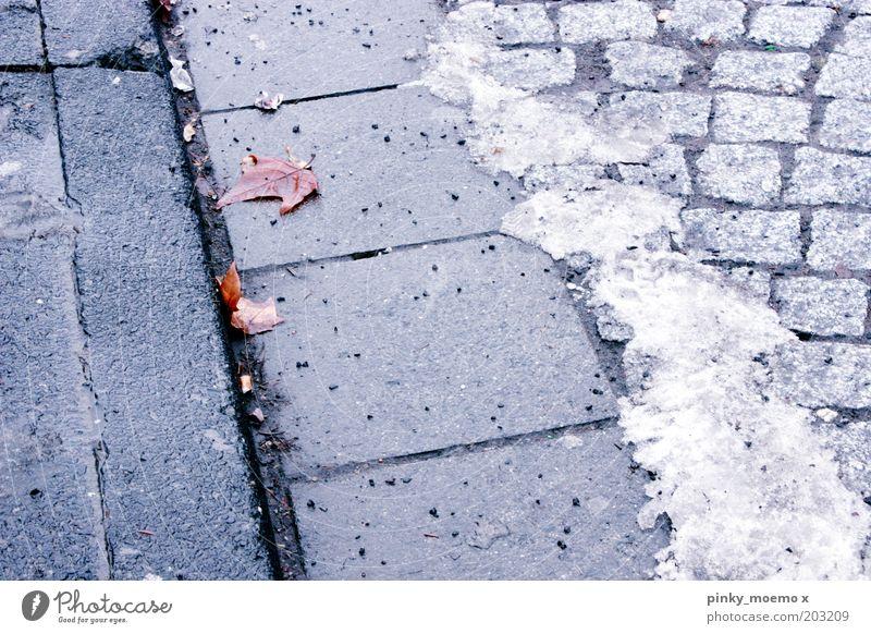 eiszeit alt Pflastersteine Eis kalt Winter Bürgersteig Stein Außenaufnahme Schnee Blatt Straße Menschenleer Frost