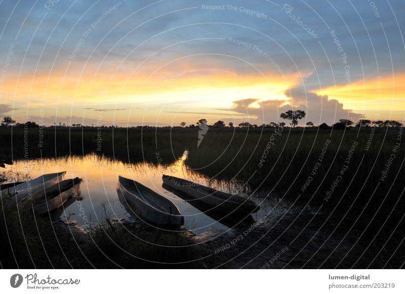 Romantik pur Sonnenaufgang Sonnenuntergang Mokoro Okavango Wasserfahrzeug ursprünglich exotisch Urwald Farbfoto Außenaufnahme Menschenleer Abend Flußmündung