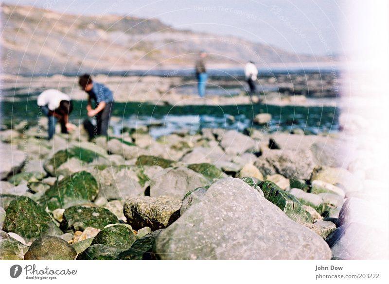 Five on a Treasure Island Jugendliche Meer Pflanze Sommer Strand Ferien & Urlaub & Reisen Stein Freundschaft Küste Suche Felsen Ausflug Abenteuer Insel Spaziergang