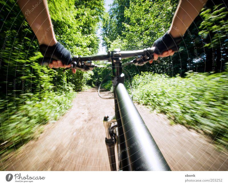 Nur Geniesser fahren Fahrrad Freizeit & Hobby Sport Fahrradfahren Mensch 1 Natur Wald Wege & Pfade Geschwindigkeit Mountainbike Freestyle Farbfoto Außenaufnahme
