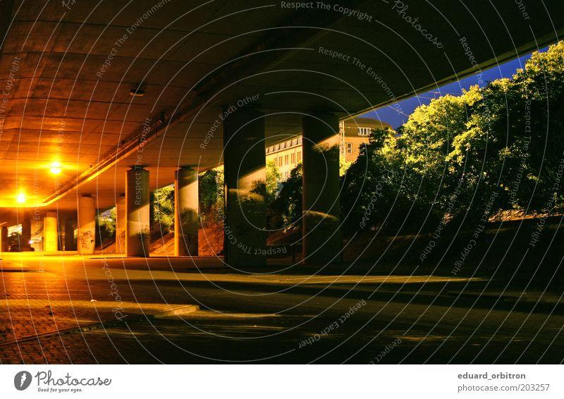Goodnight Twilight Baum grün blau Stadt rot gelb dunkel kalt Stein dreckig Beton Brücke gruselig Tunnel Verkehrswege