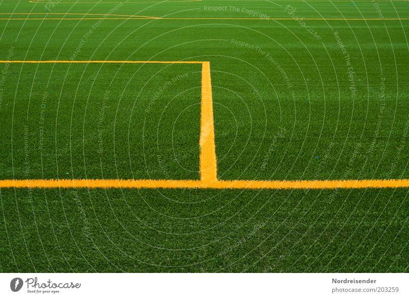 Freitag... Sport Ballsport Sportstätten Fußballplatz Stadion Sommer neu Gefühle Ziel Strafraum Rasen Kunstrasen Linie Markierungslinie Sportrasen grün gelb