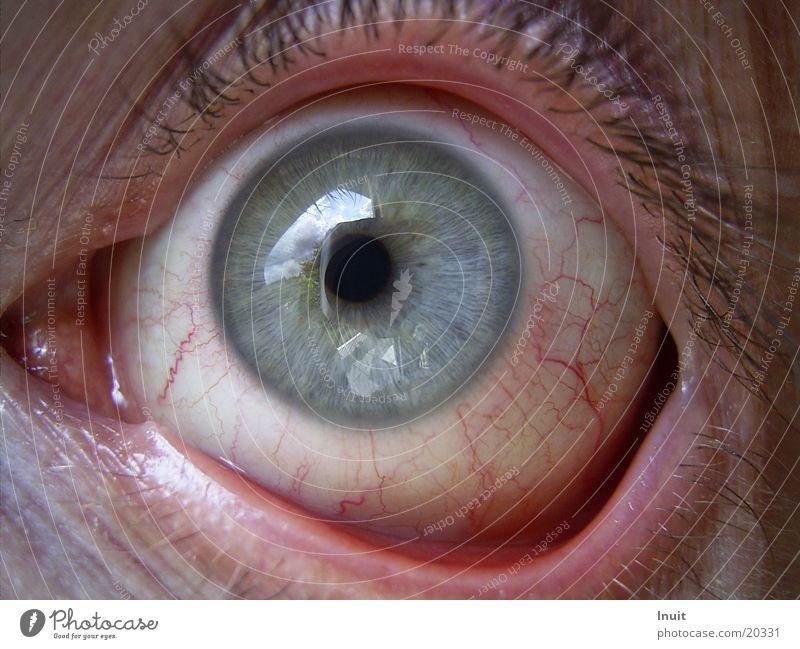 Blutauge Mann rot Auge Gefäße Regenbogenhaut Konjunktivitis