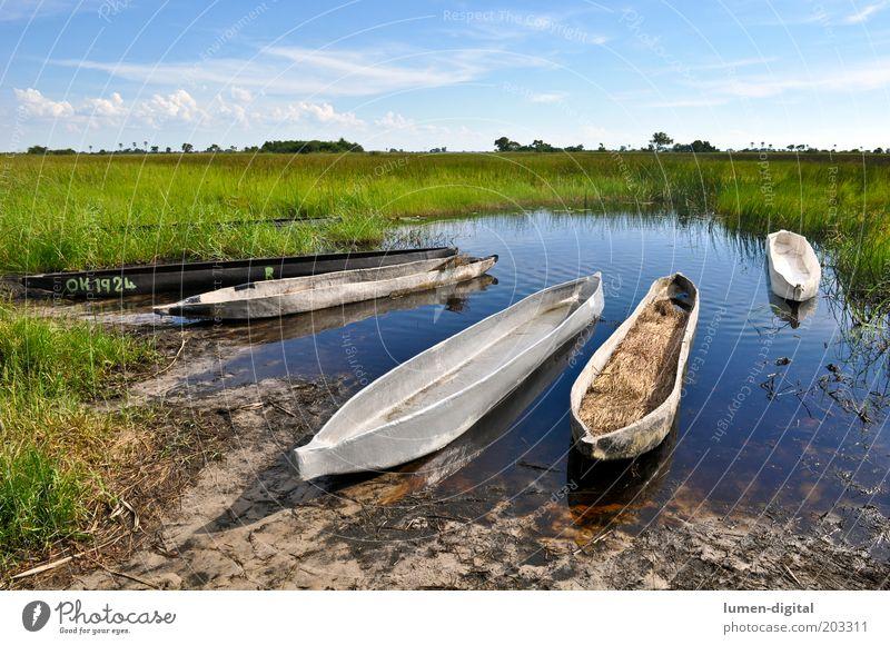 Stille Ferne Schönes Wetter Flussufer Romantik Fernweh exotisch Freiheit Afrika Namibia Okavango Wasserfahrzeug Mokoro Botswana Farbfoto Außenaufnahme Delta