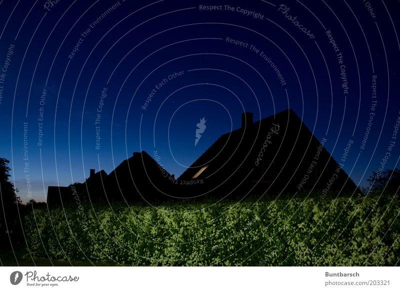 Kuckucksallee Himmel blau Stadt ruhig Haus schwarz Straße dunkel Frühling Stimmung Perspektive Ordnung Sträucher Dach Nachthimmel Dorf