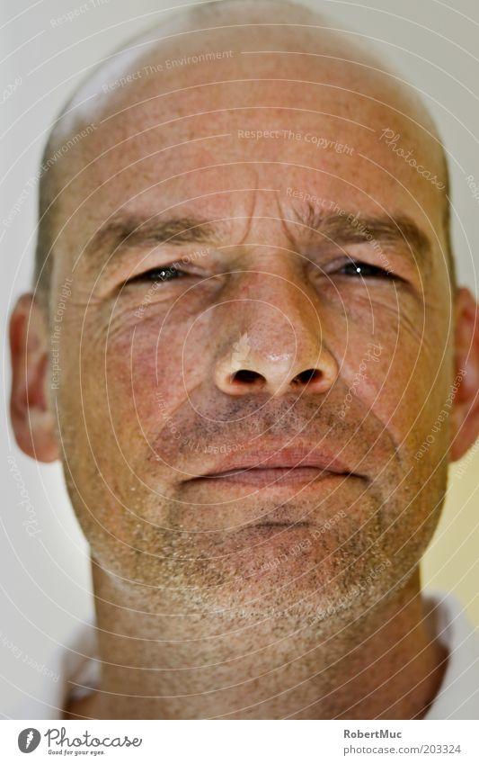 Happy Man Mensch maskulin Mann Erwachsene Kopf Mund 1 30-45 Jahre Glatze Dreitagebart beobachten authentisch Coolness seriös stachelig weiß Zufriedenheit