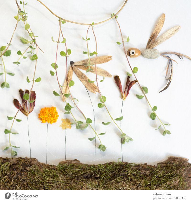 Inthejungle Freizeit & Hobby Basteln Ferne Natur Pflanze Sommer Blume Moos Blatt Blüte Wildpflanze exotisch Urwald Tier Wildtier Papageienvogel Papier