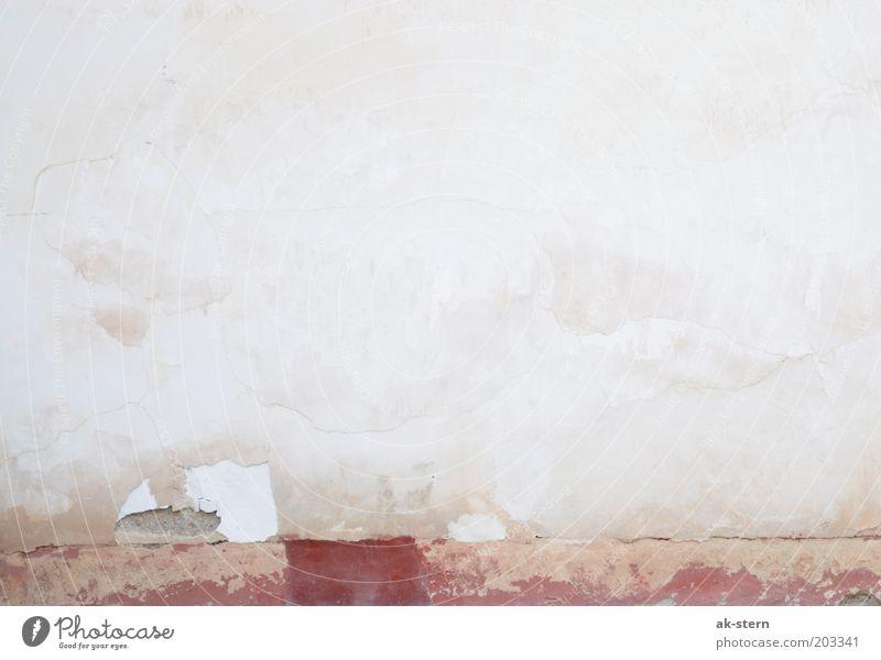 Brick in the wall alt weiß rot kalt Wand grau Stein Mauer Gebäude hell braun dreckig rosa Beton Fassade kaputt