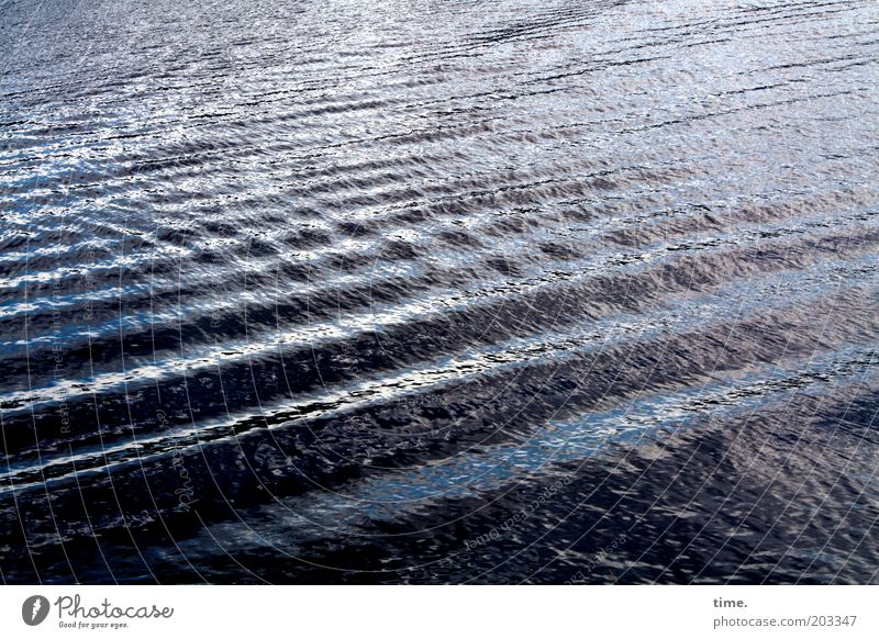 Sturmwarnung Wasser blau kalt Wellen nass Fluss Streifen geheimnisvoll Flüssigkeit Verkehrswege tief feucht Urelemente Oberfläche Elbe Wellengang