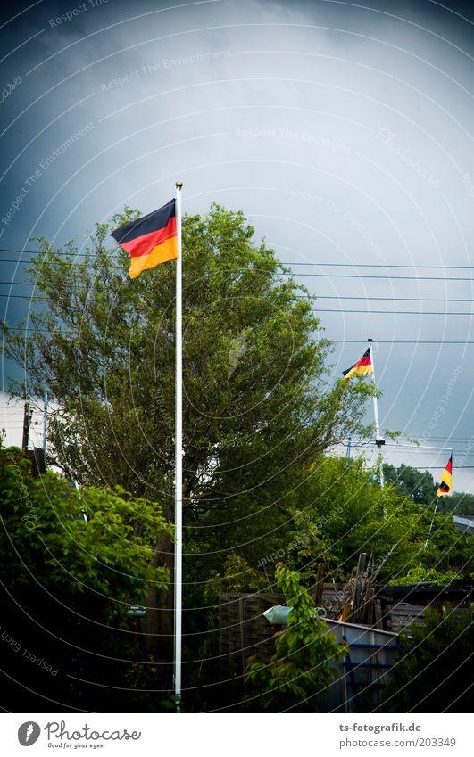 Patrioten-Spargel Fußball-WM WM 2010 Weltmeisterschaft wehen flattern Deutsche Flagge schlechtes Wetter Gewitter Kleingartenkolonie Schrebergarten Garten