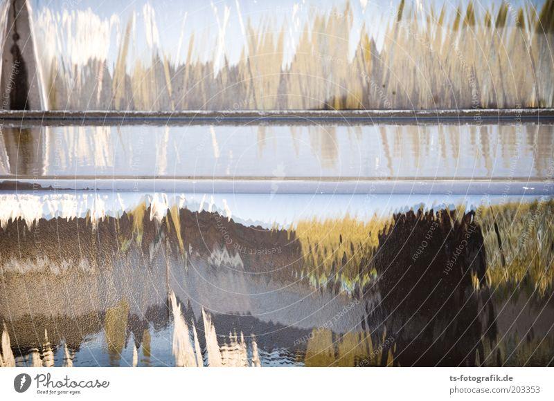 Verzerrung im Raum-Kontinuum Wasser grün blau Linie braun Metall Kunst nass ästhetisch Brunnen Flüssigkeit Skulptur Urelemente Wasserfall Verzerrung Kunstwerk