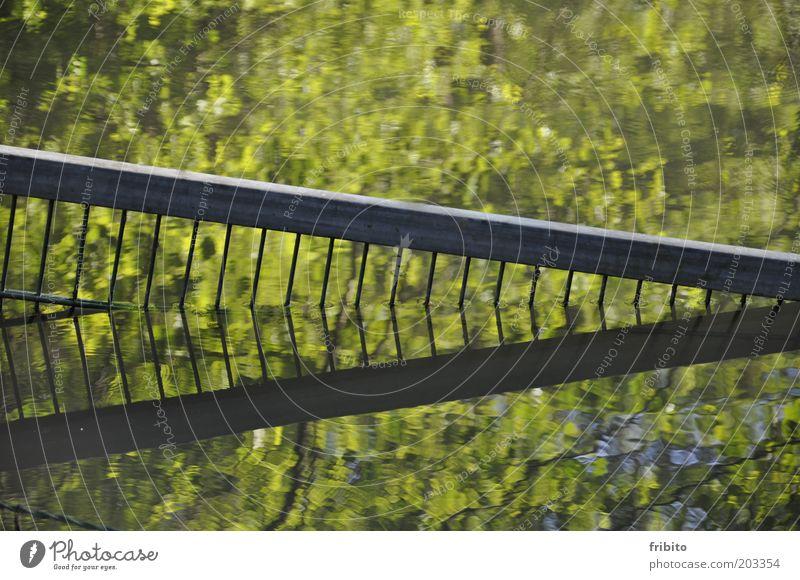 Spiegelung Umwelt Natur Landschaft Urelemente Wasser Sonnenlicht Teich See schön einzigartig nass natürlich grau grün geheimnisvoll Farbfoto Außenaufnahme