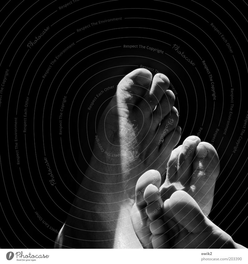 Anlehnung Haut Fuß Barfuß Zehenspitze Zehennagel Großer Onkel berühren Erholung genießen liegen Zusammensein Gefühle Zufriedenheit Vertrauen Einigkeit Sympathie