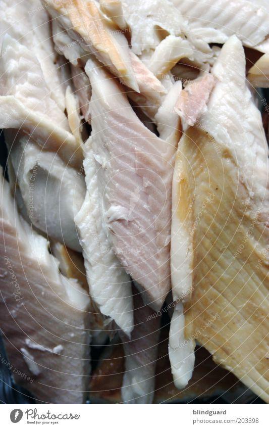 Tomorrow Lebensmittel Fisch Ernährung Mittagessen Abendessen frisch Karfreitag Räucherforelle Forellenfilet Farbfoto Innenaufnahme Detailaufnahme Menschenleer