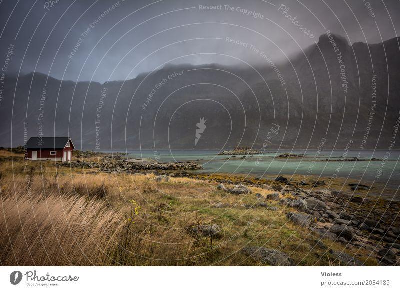 rainyday.... Umwelt Natur Landschaft Himmel Wolken Herbst Wetter Berge u. Gebirge Schlucht Flussufer Nordsee atmen Erholung fantastisch Norwegen Fjord ruhig