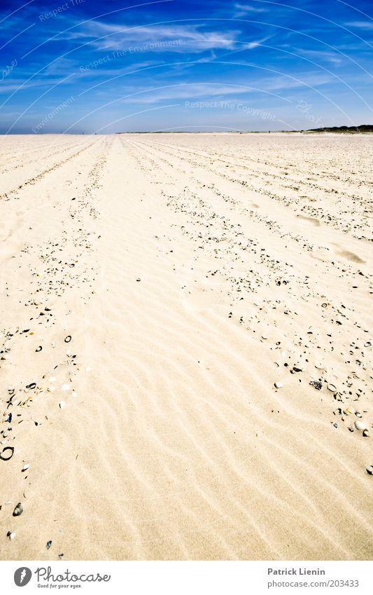 Einsam am Strand Umwelt Natur Landschaft Sand Luft Himmel Wolken Sommer Wetter Schönes Wetter Nordsee Insel Spiekeroog Blick Muschel blau Linie Ferne