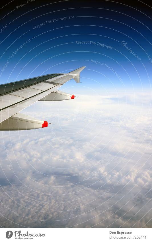 Unterwegs Himmel blau Ferien & Urlaub & Reisen Wolken Ferne Freiheit Flugzeug fliegen Horizont Geschwindigkeit Ausflug Luftverkehr Tourismus Reisefotografie Unendlichkeit Tragfläche