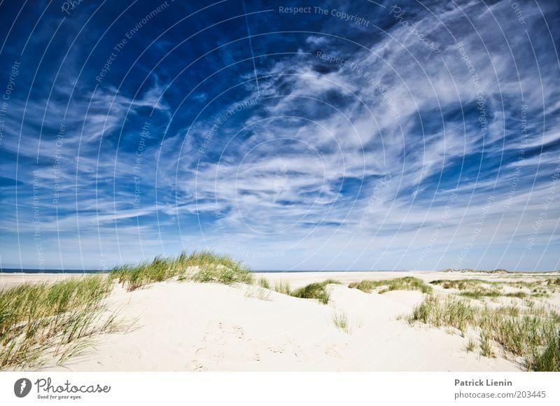 Spiekeroog Umwelt Natur Pflanze Sand Luft Himmel Wolken Sommer Schönes Wetter Küste Strand Nordsee Meer Insel blau Düne Formation Ferien & Urlaub & Reisen ruhig