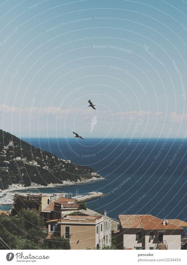 kitsch | riviera-postkarte Ferien & Urlaub & Reisen blau Sommer schön Landschaft Meer Tier Küste Tourismus Vogel oben retro Schönes Wetter Italien Postkarte