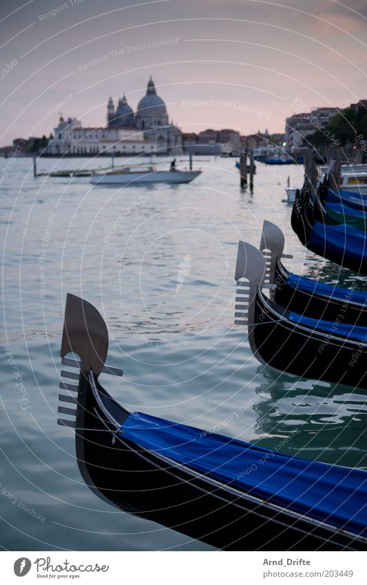Gondeln in Venedig schön Ferne Leben Erholung Gebäude Wasserfahrzeug Stimmung Wetter Ausflug Freizeit & Hobby Bauwerk Schifffahrt Fernweh Tradition