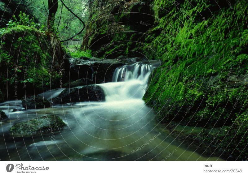 Bach 02 Langzeitbelichtung Wasser Idylle Moos