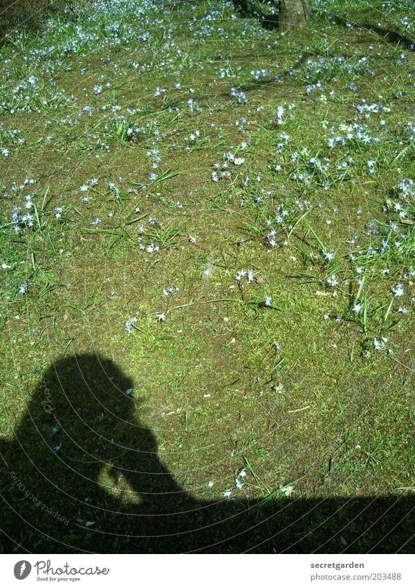 nachdenken über den echten kunstrasen. Mensch Natur grün Pflanze Einsamkeit schwarz Erholung Umwelt Frühling Gras Blüte träumen Park Zufriedenheit warten