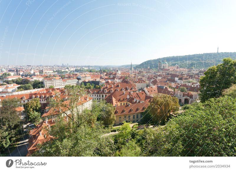 NATUR IN PRAG Natur Ferien & Urlaub & Reisen blau Stadt Baum Wald Reisefotografie Beleuchtung Stadtleben Europa Postkarte Städtereise Prag Tschechien Moldau