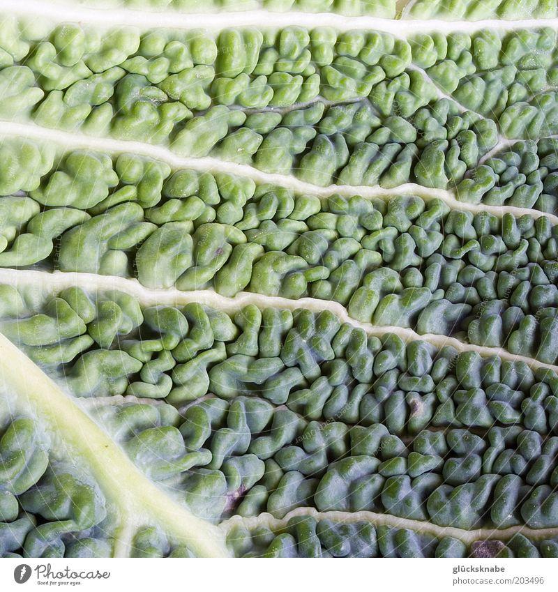 wirsing grün Blatt Lebensmittel natürlich frisch Gemüse Vitamin Makroaufnahme Detailaufnahme Kohl Wirsing