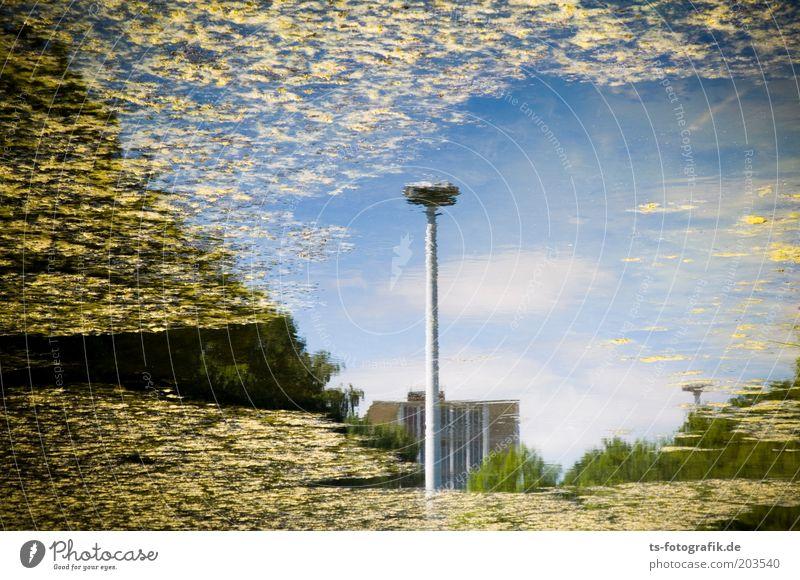 Sterntalerchens Montagsproduktion Himmel Wasser blau Wolken Haus gelb See dreckig Perspektive Fluss Seeufer Straßenbeleuchtung Teich Umweltschutz Bremen Wasseroberfläche