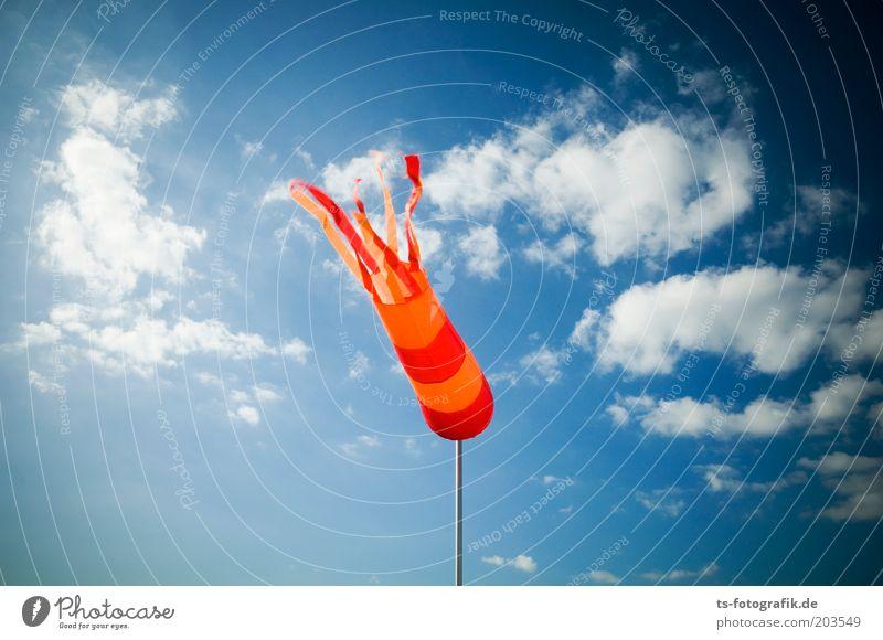 Flying Tintenfisch Himmel blau rot Meer Ferien & Urlaub & Reisen Wolken Freiheit Umwelt Luft orange Wetter Wind Urelemente Sturm gestreift Schönes Wetter