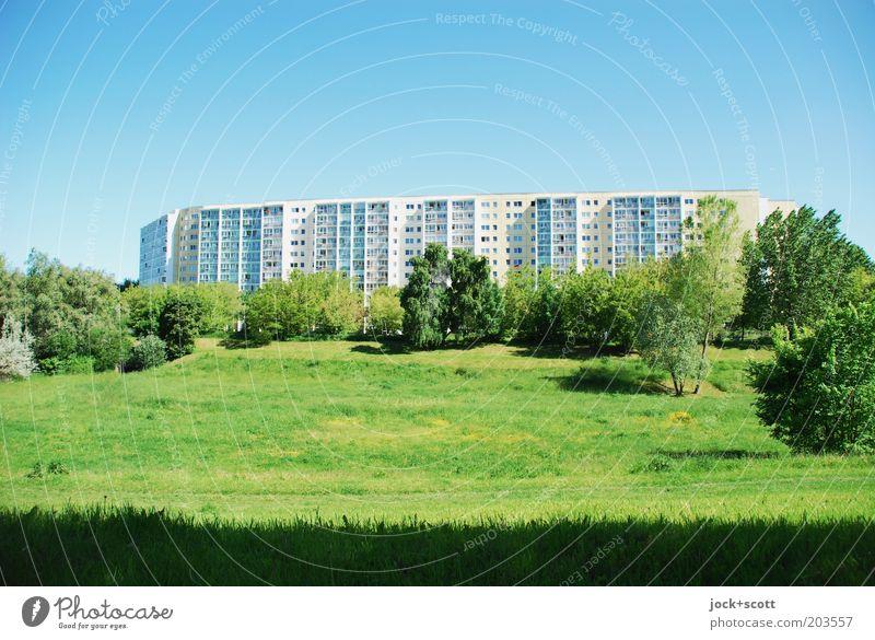 südliches Marzipanien Stadt blau grün Baum ruhig Umwelt Wärme Leben Architektur Wiese Gras natürlich Fassade Park Sträucher Aussicht