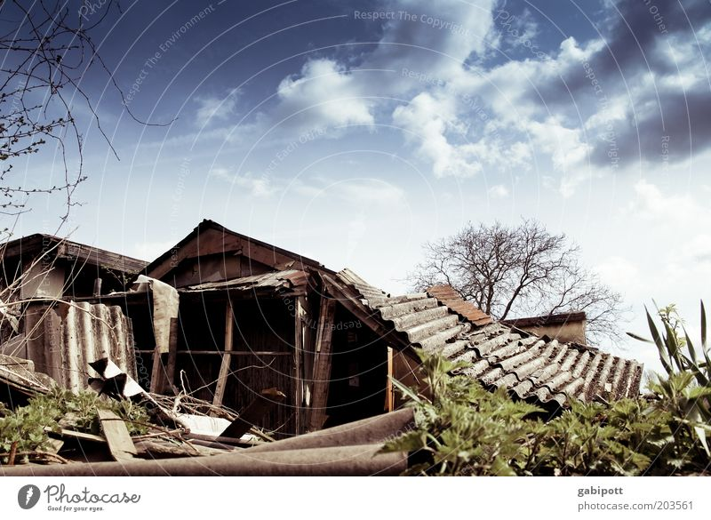 Zusammenbruch alt Gebäude Armut Gartenbau Dach kaputt Wandel & Veränderung Baustelle Häusliches Leben Vergänglichkeit Verfall Vergangenheit Ruine Karton Renovieren Demontage