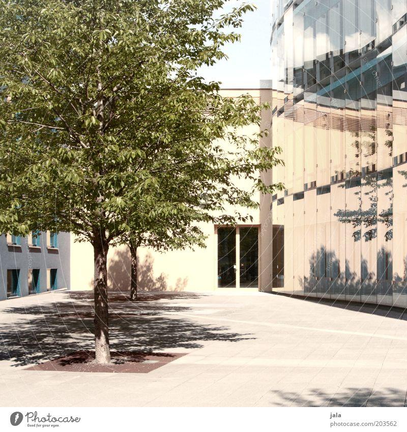 sommer vor der tür Schönes Wetter Baum Haus Platz Bauwerk Gebäude Architektur Fenster Tür Stadt Wärme Farbfoto Außenaufnahme Menschenleer Tag Licht Schatten
