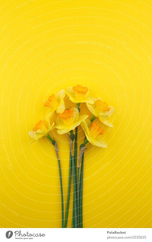 #AS# Frühling 2017 Kunst Kunstwerk ästhetisch Narzissen Ostern Frühlingsblume Frühlingsfarbe Frühlingsfest gelb Gelbstich Blüte Blütenknospen viele Blumenstrauß