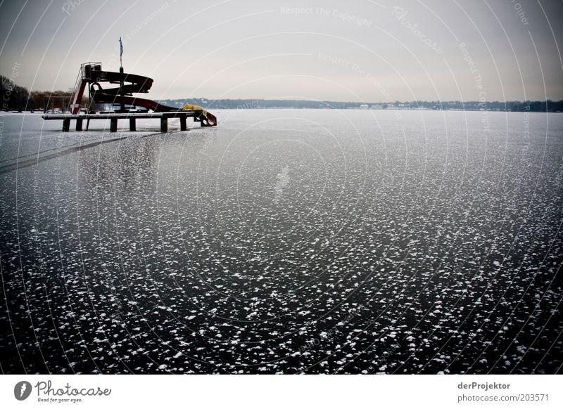 Jetzt ein kühles Eis wäre nicht schlecht Winter schwarz kalt Berlin See Landschaft Eis Umwelt gefroren Schönes Wetter Wannsee