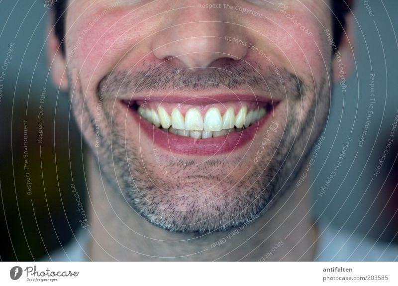 Strahlemann Mensch maskulin Mann Erwachsene Kopf Gesicht Nase Mund Lippen Zähne Bart 1 30-45 Jahre schwarzhaarig brünett Dreitagebart Lächeln lachen